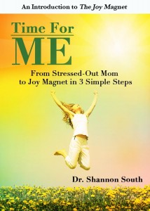 Shannon South book cover